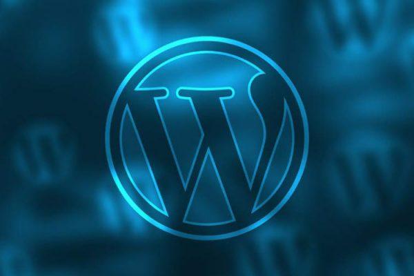 Cinco tipos de plugins para otimizar o seu WordPress